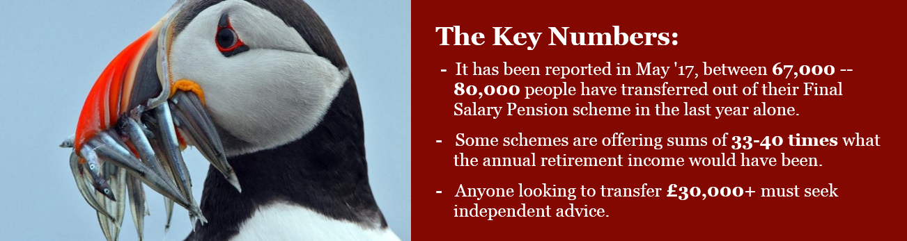 Final Salary Pension Transfers - Key Numbers PNG